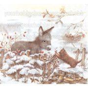 Szalvéta Karácsonyi, Csacsi és kiscica
