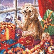 Szalvéta, Karácsonyi, Bodri az ablakban