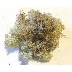 Termés Natúr izlandi moha 20 g / csomag