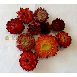 Termés Szalmavirág 10db/csomag