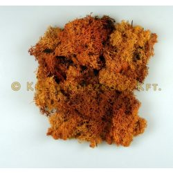 Termés Izlandi moha 20 g/cs - Narancssárga